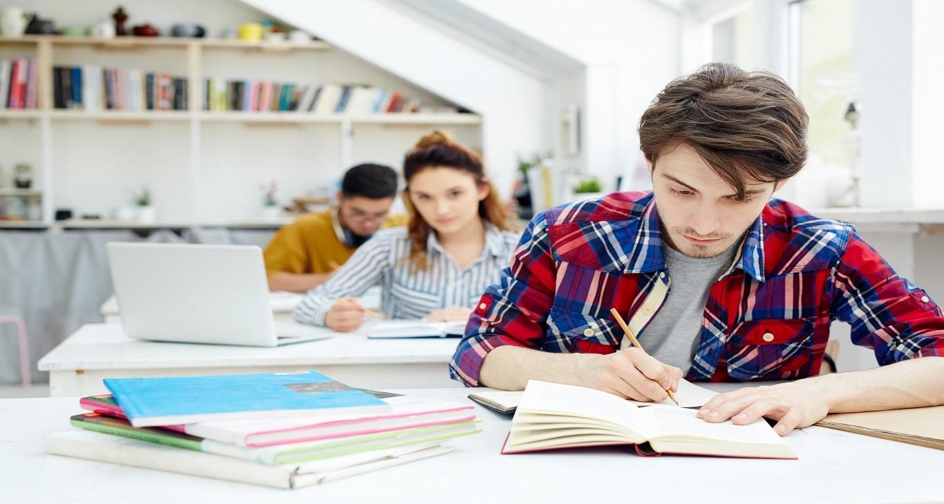 Programe Studimi